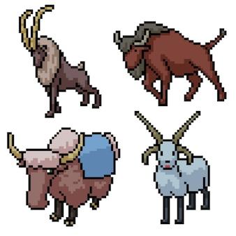 Pixel art set mamífero cuerno aislado
