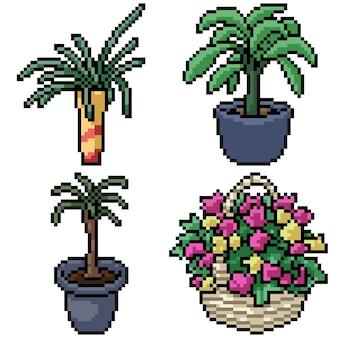 Pixel art set planta de decoración aislada