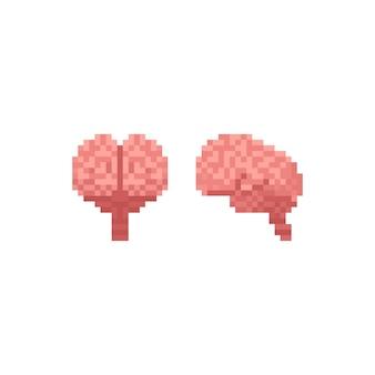 Pixel art vista frontal y vista lateral iconos del cerebro humano.