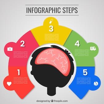 Planrilla infográfica con cerebro