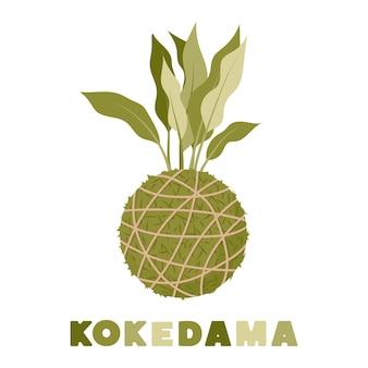 Planta de bola de musgo japonés kokedama jardinería en casa ilustración vectorial