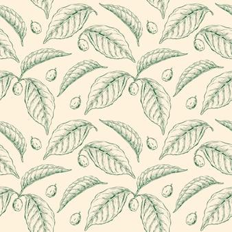 Planta de café hoja de patrones sin fisuras