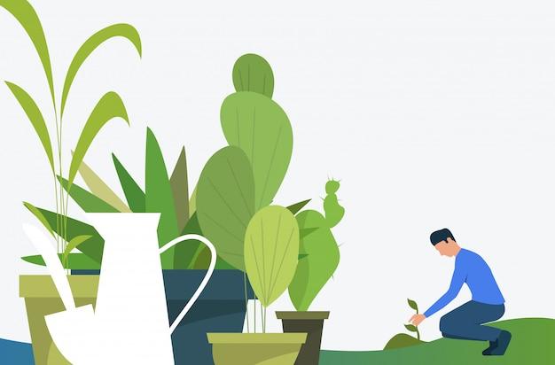 Planta creciente de hombre al aire libre y plantas de interior verdes en macetas.