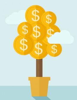 Planta de dinero en una olla.