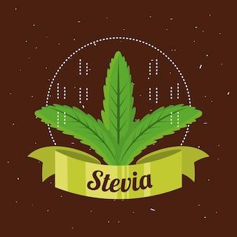 Planta edulcorante natural stevia y producto ecológico
