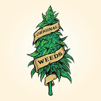 Planta de malezas de marihuana cannabis con cinta