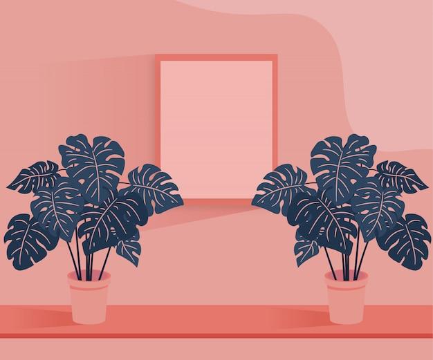 Planta y marco