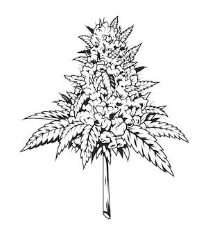 Planta de marihuana monocromática vintage