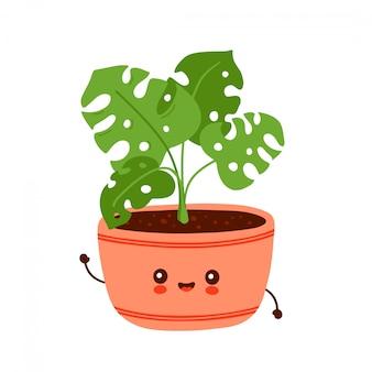 Planta monstera divertida feliz linda en maceta. diseño de ilustración de personaje de dibujos animados de vector. aislado