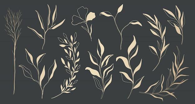 Planta naturaleza oro conjunto dibujado a mano.