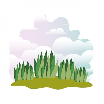 Planta en paisaje aislado