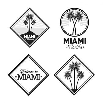 Planta de palmera sobre diseño de etiqueta