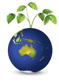 Una planta sobre el planeta tierra.