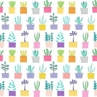 Planta suculenta sin fisuras de fondo.