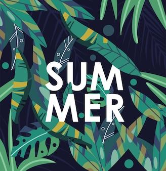 Planta tropical de verano