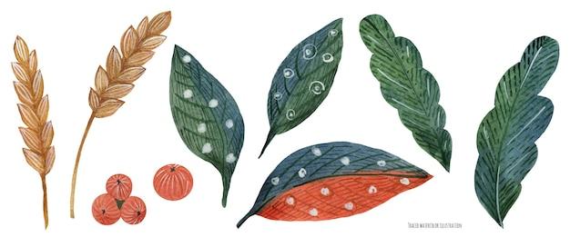 Plantas de acuarela de año nuevo. poinsettia y hojas rojizas y trigo