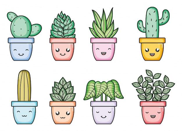 Plantas de casa y cactus kawaii personajes de comic.