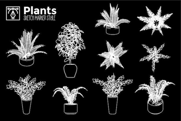 Plantas dibujadas a mano. conjunto de vistas de plantas aisladas.