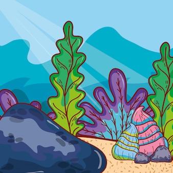 Plantas exóticas de algas marinas con conchas y piedra.