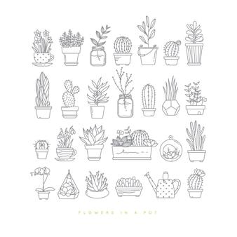 Plantas fijas planas del icono en los potes que dibujan en el fondo blanco.
