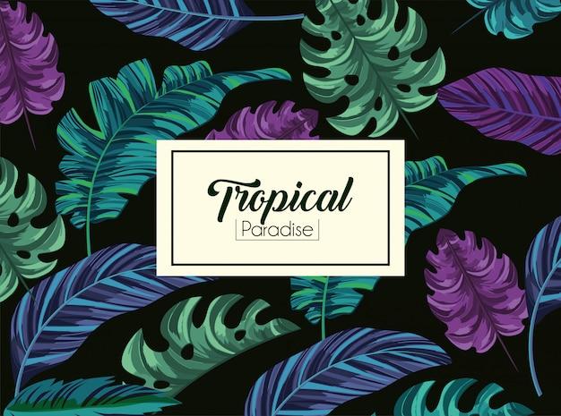 Plantas de hojas tropicales y etiqueta exótica.