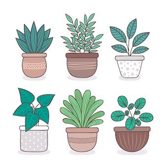 Plantas de interior dibujadas a mano en colección de macetas