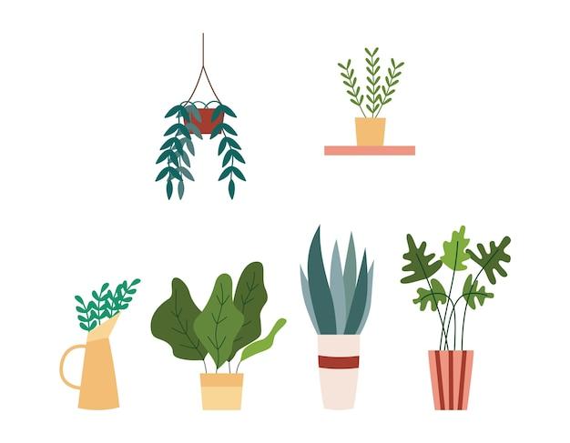 Plantas de interior en macetas y jardineras conjunto de ilustraciones planas aisladas