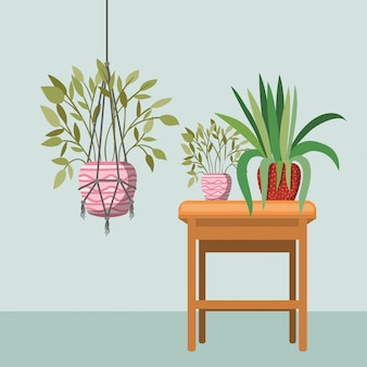 Plantas de interior en perchas de macramé y silla de madera