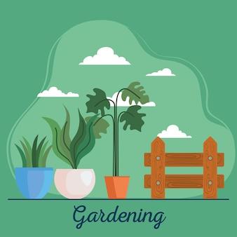 Plantas de jardinería en macetas y diseño de cercas, plantación de jardines y tema de la naturaleza.