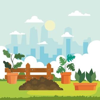 Plantas de jardinería en macetas y diseño de tierra, plantación de jardines y tema de la naturaleza.
