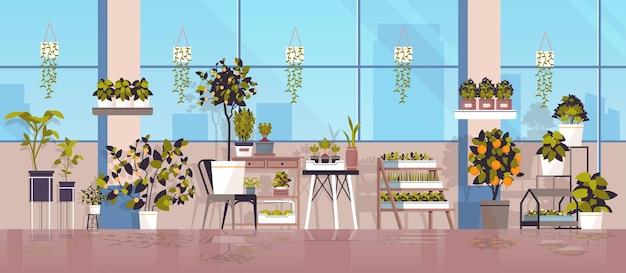 Plantas en macetas de invernadero en estantes concepto de jardinería horizontal