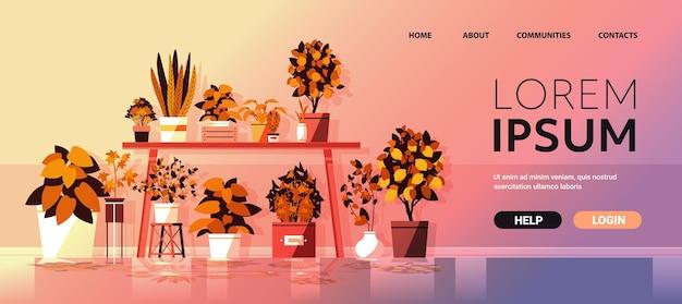 Plantas en macetas de invernadero en la mesa concepto de jardinería espacio de copia horizontal