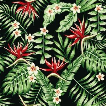 Plantas tropicales hojas y flores de la plumeria frangipani y el fondo de pantalla de patrón transparente de ave del paraíso