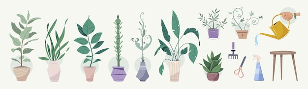 Plantas verdes en macetas, herramientas de jardinería establecen objetos aislados. macetas de árboles, regadera, podadoras, rastrillo, pistola rociadora