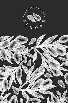 Plantilla de almendra boceto dibujado a mano. ilustración de alimentos orgánicos en la pizarra. ilustración de nuez vintage. fondo botánico de estilo grabado.