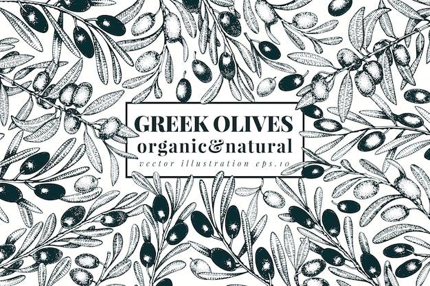Plantilla de banner de olivo