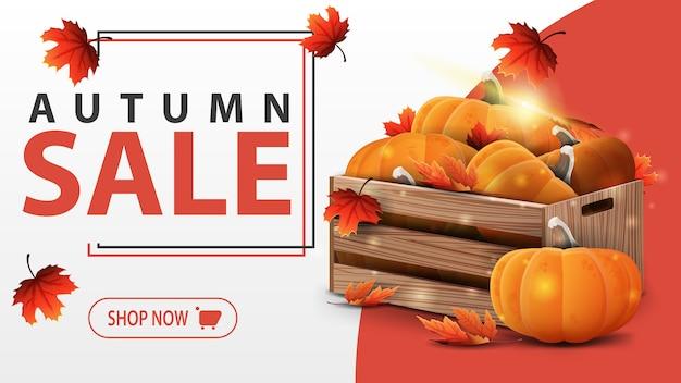 Plantilla de banner de venta otoño