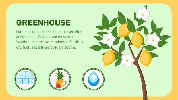 Plantilla de banner de web de invernadero con espacio de texto