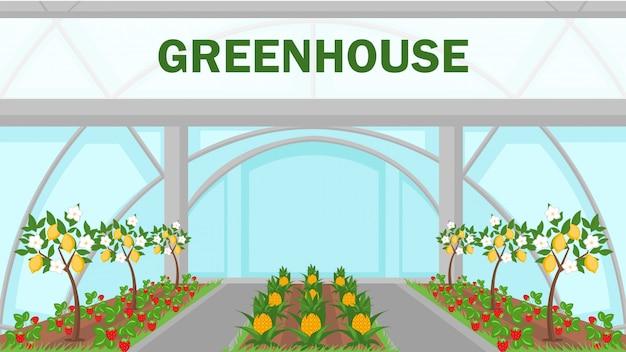 Plantilla de banner de web de invernadero de frutas tropicales