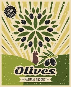 Plantilla de cartel de aceituna vintage