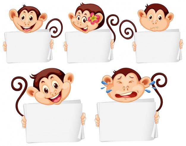 Plantilla de cartel en blanco con monos felices sobre fondo blanco