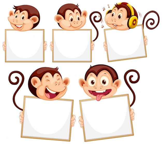Plantilla de cartel en blanco con monos lindos sobre fondo blanco