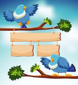 Plantilla de cartel con dos pájaros azules en la rama