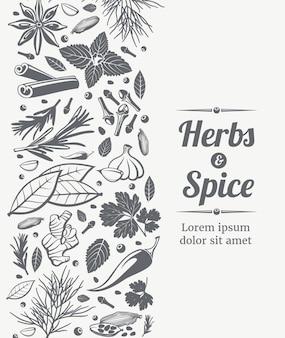 Plantilla de cartel de hierbas y especias