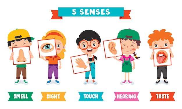 Plantilla de cinco sentidos con niños sosteniendo órganos humanos