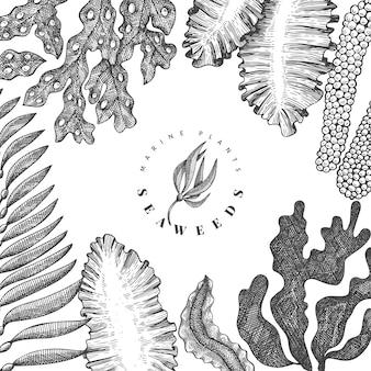 Plantilla de diseño de algas. ilustración de algas vector dibujado a mano.
