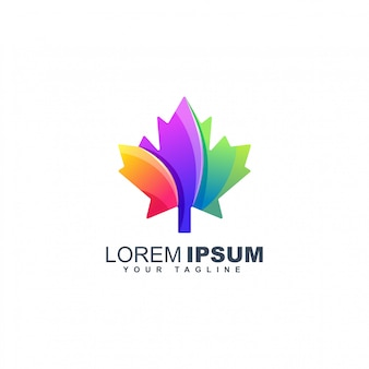 Plantilla de diseño de logotipo colorido hoja de arce