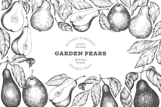 Plantilla de diseño de pera. ilustración de frutas de jardín de vector dibujado a mano. bandera botánica retro jardín de estilo grabado.