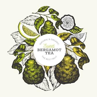 Plantilla de diseño de rama de bergamota