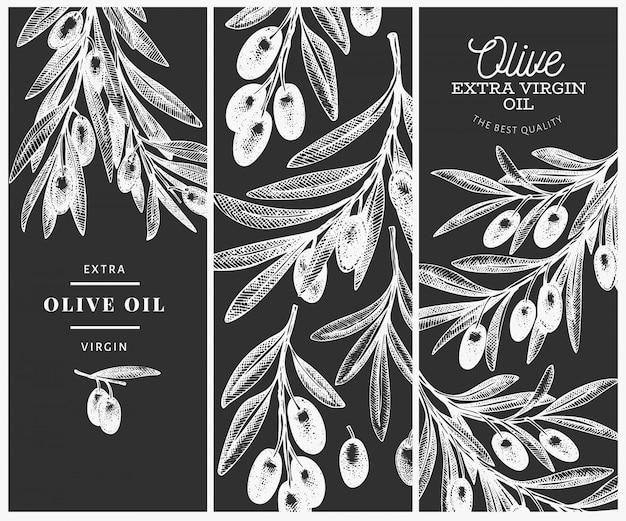 Plantilla de diseño de rama de olivo.
